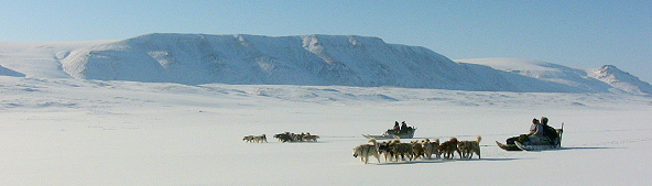 dogsledding with Eskimos